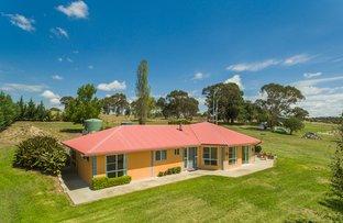 Picture of 92 Quartz Gully Road, Uralla NSW 2358