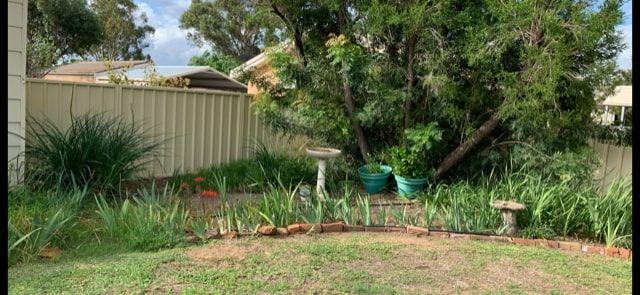 115 Cassilis Street, Coonabarabran NSW 2357, Image 1