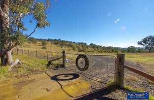 3723 Waterfall Way, Wollomombi NSW 2350