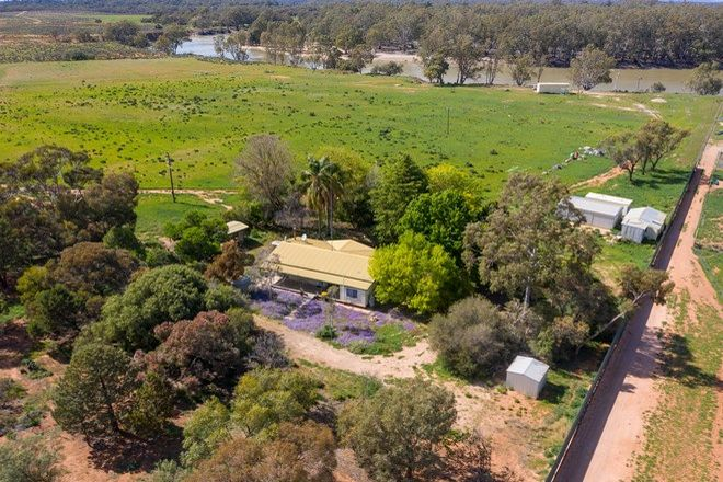 Picture of Ulmurra Farm Rufus River Road via Wentworth, RUFUS NSW 2648