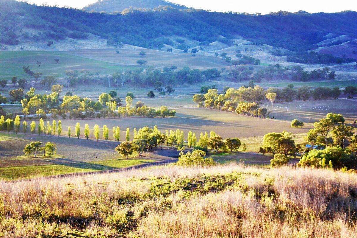 CARINYA/618 Monteray Road, Loomberah NSW 2340, Image 0