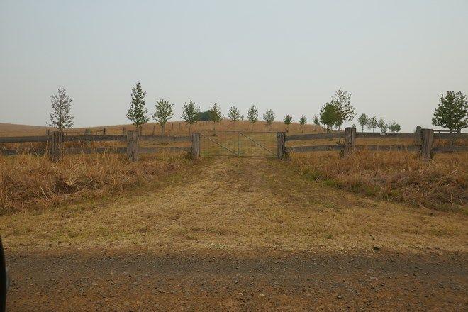 Picture of 177 Baraimal Lane, CEDAR POINT NSW 2474