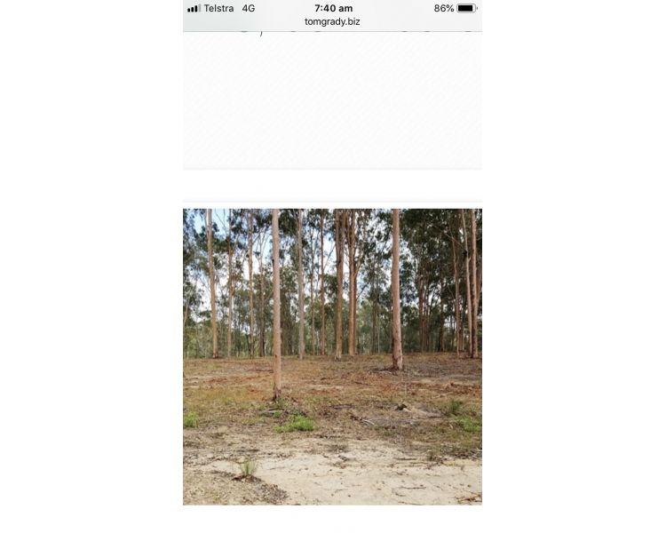 632 Rocks Road, The Palms QLD 4570, Image 2