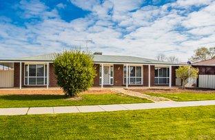 Picture of 28 Jacana Avenue, Moama NSW 2731