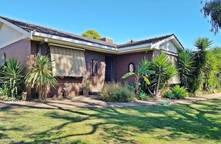 Picture of 381 Geodetic Road, Wanalta VIC 3612