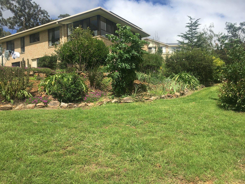 50W Legge St, Walcha NSW 2354, Image 0