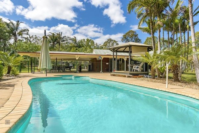 Picture of 35 Veresdale Scrub Road, GLENEAGLE QLD 4285