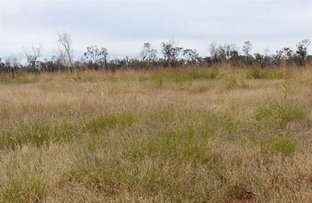 Picture of . Lloyds Hill, Augathella QLD 4477