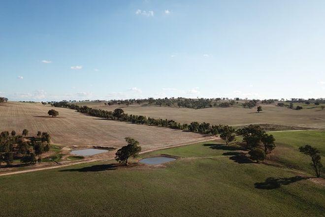 "Picture of ""Jakara""/871 Stockinbingal Road, COOTAMUNDRA NSW 2590"