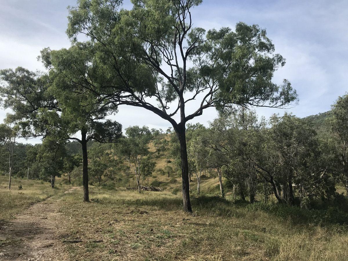 494 Yeppoon Road, Limestone Creek QLD 4701, Image 2