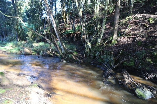 Picture of 48 Twin Creeks Road, MENGHA TAS 7330
