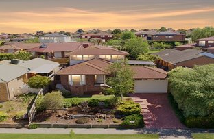Picture of 111 David Collins Drive, Endeavour Hills VIC 3802