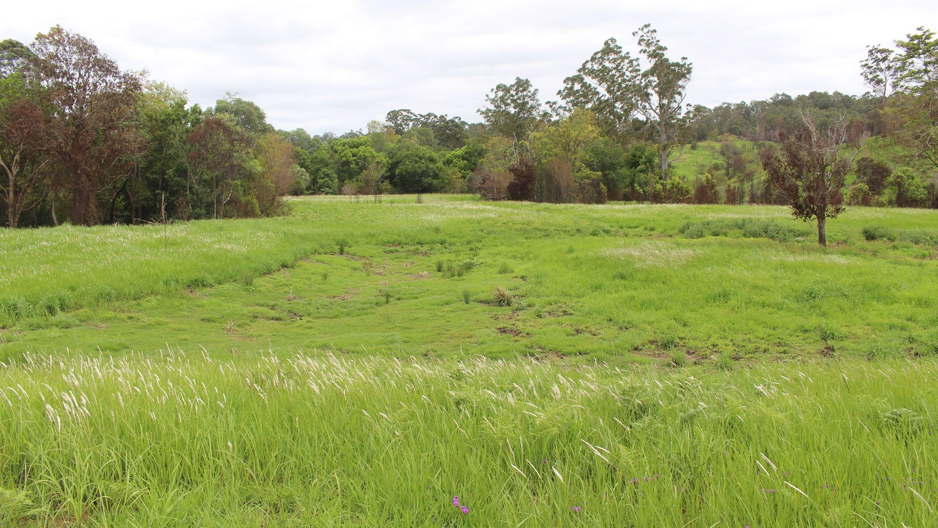 242 Gardner Rd, North Deep Creek QLD 4570, Image 2