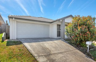 Picture of 5 Hallvard Crescent, Augustine Heights QLD 4300