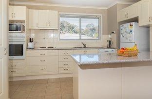17 Cook Avenue, Surf Beach NSW 2536