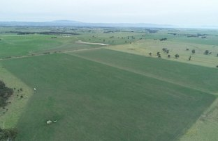 Picture of Lower Cairnbrook Rd, Glengarry VIC 3854
