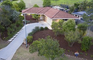 Picture of 50 Brumby Circuit, Sumner QLD 4074