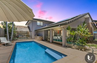 Picture of 12 Canegrove Circuit, Wellington Point QLD 4160