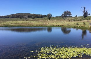 Picture of Lot 14/703 Bonds Road Hargarves, Mudgee NSW 2850