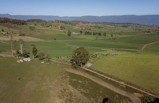 Picture of 1186 Mole Creek Road, Needles TAS 7304