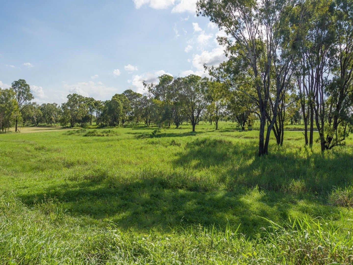 32 Pink Lily Road, Pink Lily QLD 4702, Image 0
