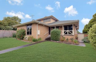Picture of 8 Taylor Court, Endeavour Hills VIC 3802
