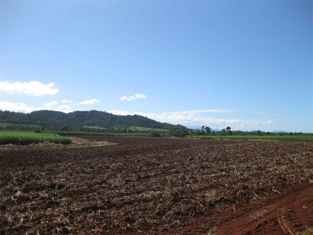 2098 Innisfail-Japoon Road, Bombeeta QLD 4871, Image 0