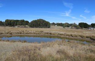 Picture of 20 Pilarcik Lane, Oberon NSW 2787