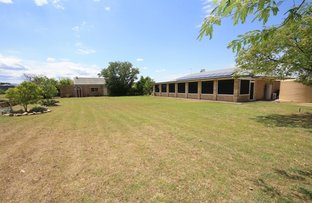Picture of 753 Kaputar Road, Narrabri NSW 2390