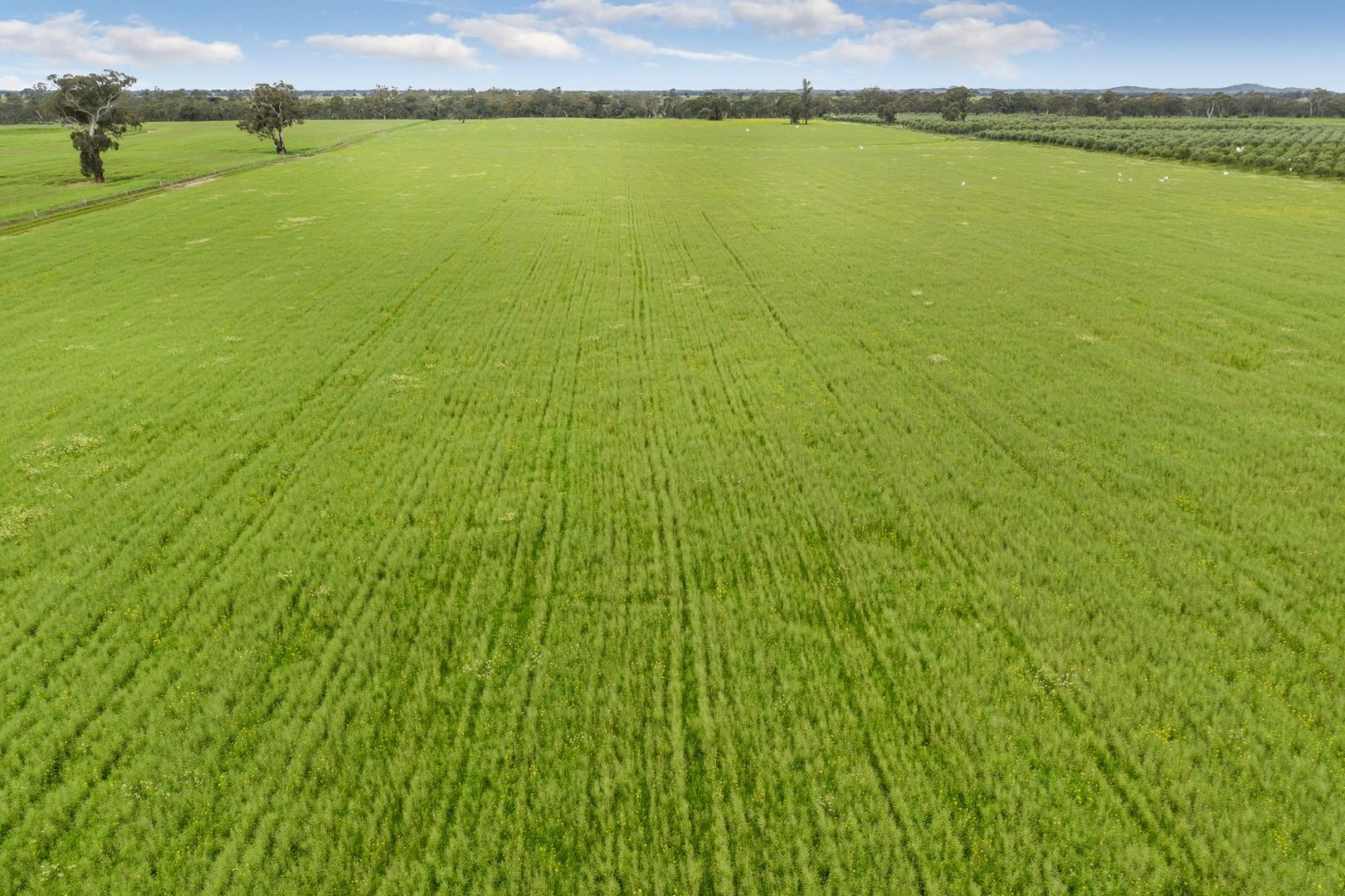 Lot 2 Barnadown-Knowsley Road, Muskerry VIC 3557, Image 1