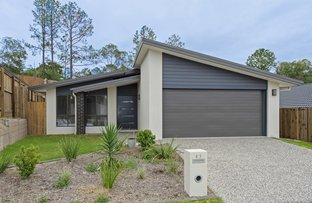 Picture of 43 Kookaburra Circuit, Maudsland QLD 4210
