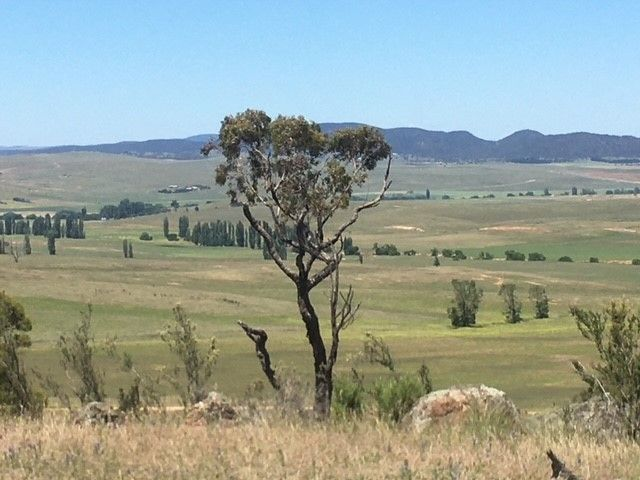 """""""Part Featherstone"""" 399 Rothlyn Road, Cooma NSW 2630, Image 2"""