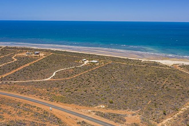 Picture of Lot 320 Minilya-Exmouth Road, NORTH WEST CAPE WA 6707