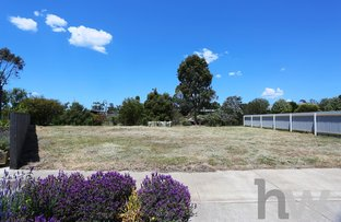 Picture of 11 Redgum Court, Winchelsea VIC 3241