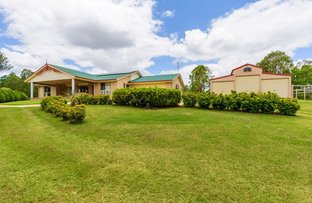 Picture of 16 Red Gum Drive, Marys Creek QLD 4570