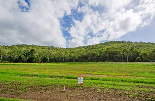 Picture of Lot 115 Clearwater Court, Wongawallan QLD 4210