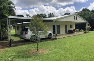 Picture of 1231 Old Tully Rd, El Arish QLD 4855