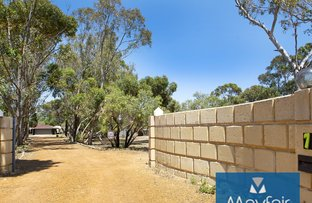 Picture of 75 Blackbutt Gr, Gabbadah WA 6041