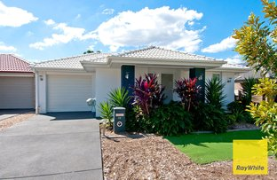 Picture of 18 Travertine Ave, Logan Reserve QLD 4133