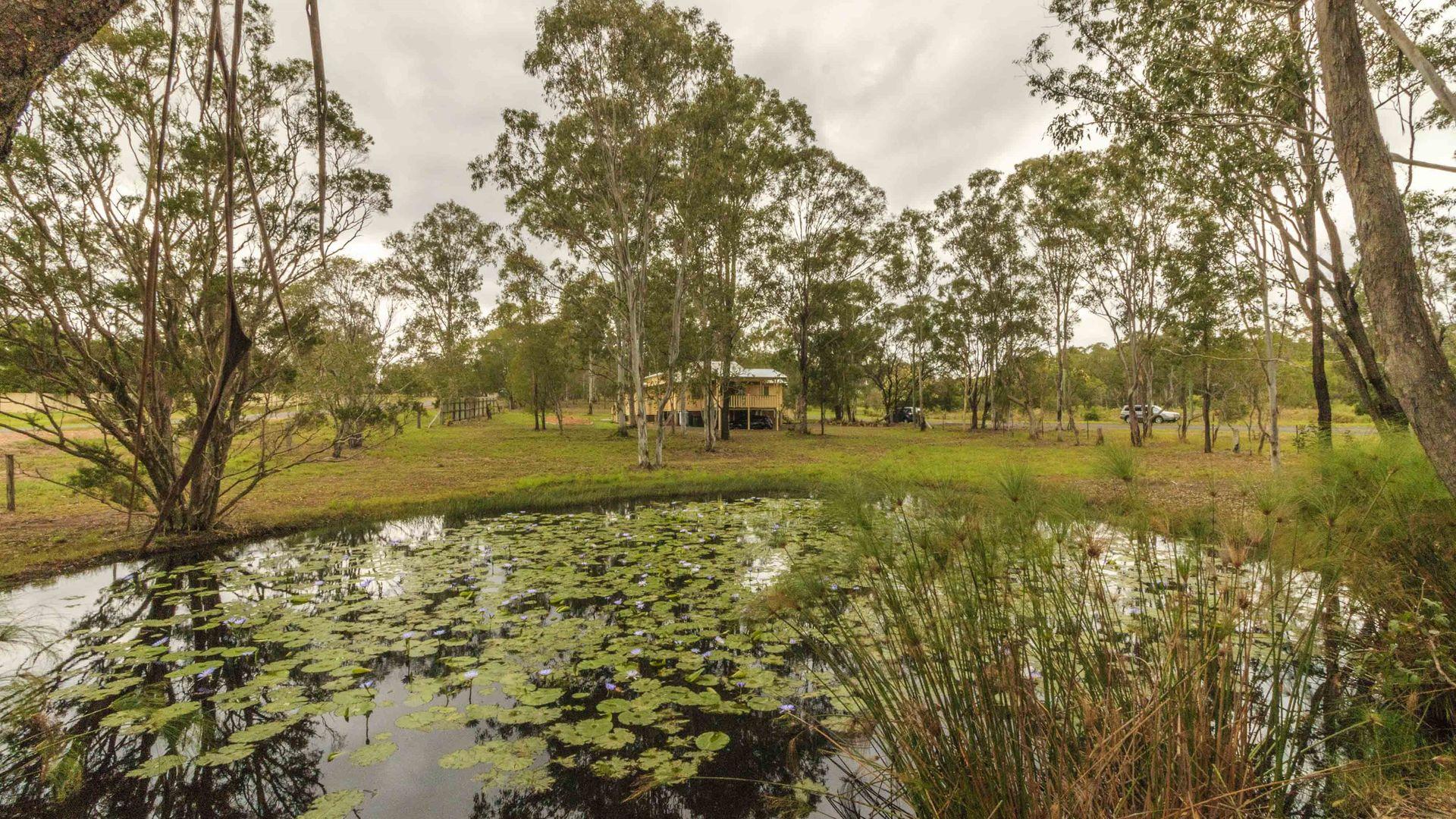 708 A Torbanlea Pialba Rd, Takura QLD 4655, Image 2
