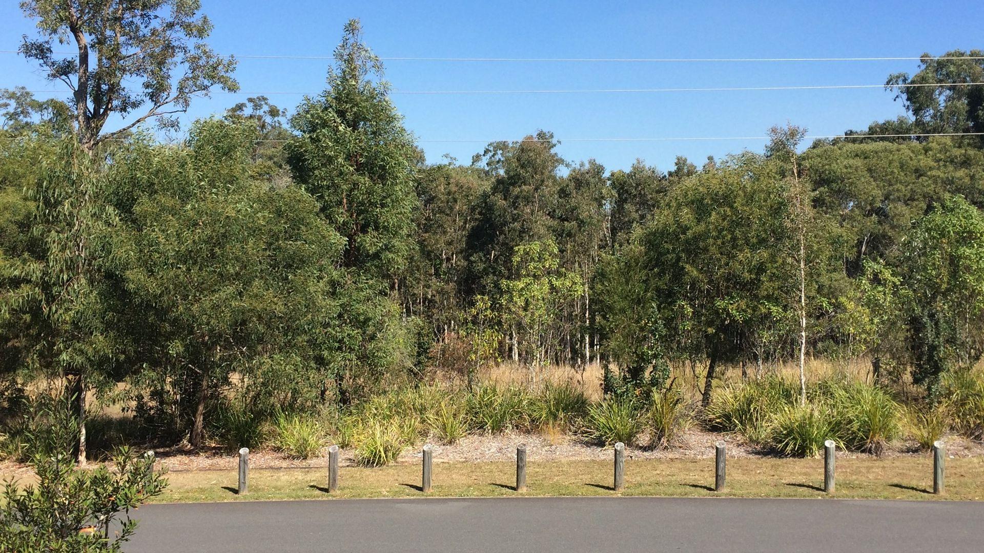 54 Van Beelen Street, Caboolture QLD 4510, Image 1