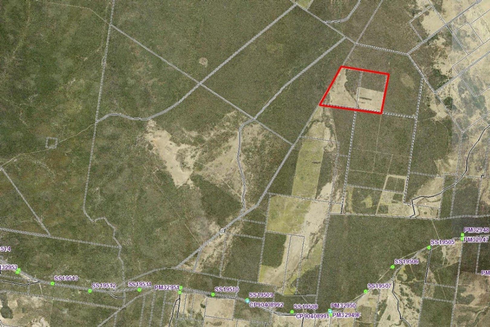 15010 Bruxner Highway, Camp Creek NSW 4385, Image 2