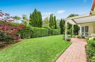 Picture of 1 Hillcrest Drive, St Ives NSW 2075
