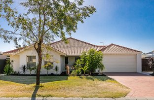 Picture of 24 Ghost Gum Boulevard, Banksia Grove WA 6031