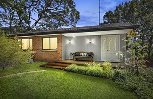 Picture of 11 Cousins Road, Beacon Hill NSW 2100