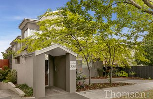 Picture of 4/386 Dandenong Road, Caulfield North VIC 3161