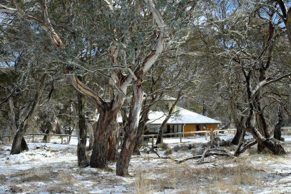 168 Kidmans Rd, Grosses Plain NSW 2627, Image 2
