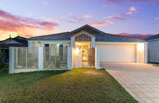 Picture of 16 Samson Street, North Lakes QLD 4509