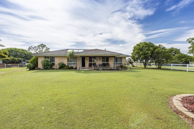 Picture of 1284 Summerland Way, MOUNTAIN VIEW NSW 2460