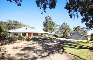 Picture of 24 Darling Road, Gruyere VIC 3770